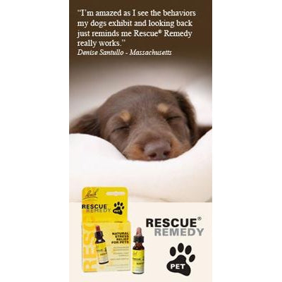 Rescue Remedy Pet Nelson Bach Rescue Remedy Pet, 10mL-Dog-Rescue Remedy Pet-PetPhenom