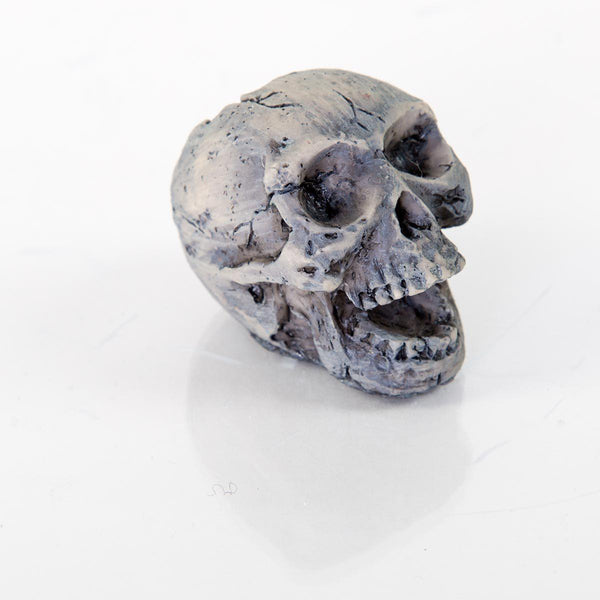 "BioBubble Decorative Human Skull Small 2"" x 1"" x 2""-Small Pet-BioBubble-PetPhenom"