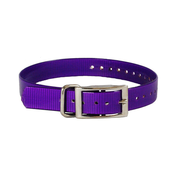 "The Buzzard's Roost Collar Strap 1"" Purple 1"" x 24""-Dog-The Buzzard's Roost-PetPhenom"