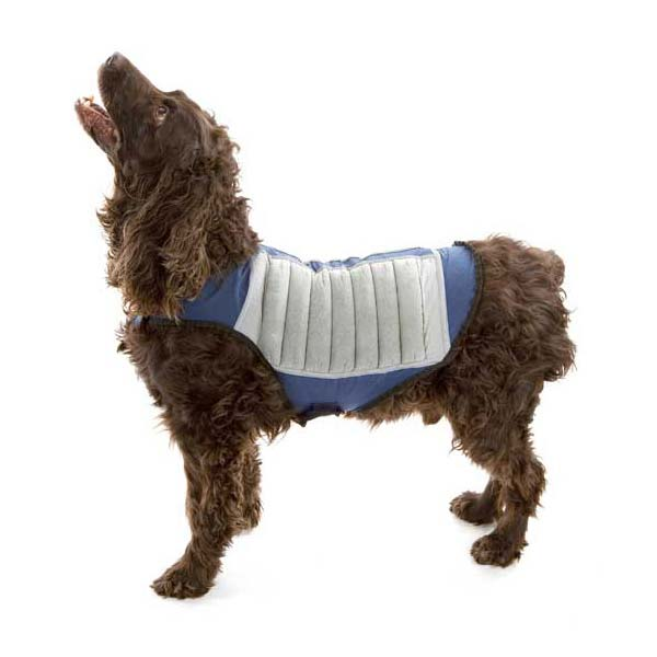 Cool K9 Dog Cooling Jacket Large Blue/Gray-Dog-Cool K9-PetPhenom
