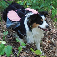 Doggles® Backpack Extreme Gray/Pink -Large-Dog-Doggles®-PetPhenom