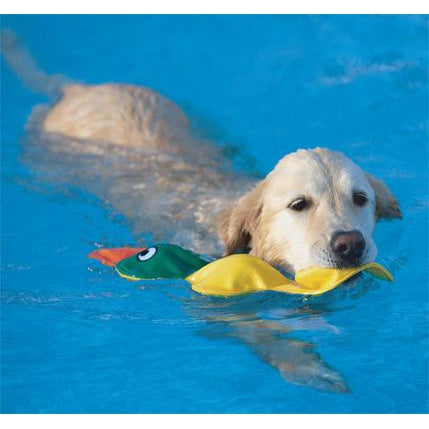 Doggles® Get Wet Duck - Yellow-Dog-Doggles®-PetPhenom