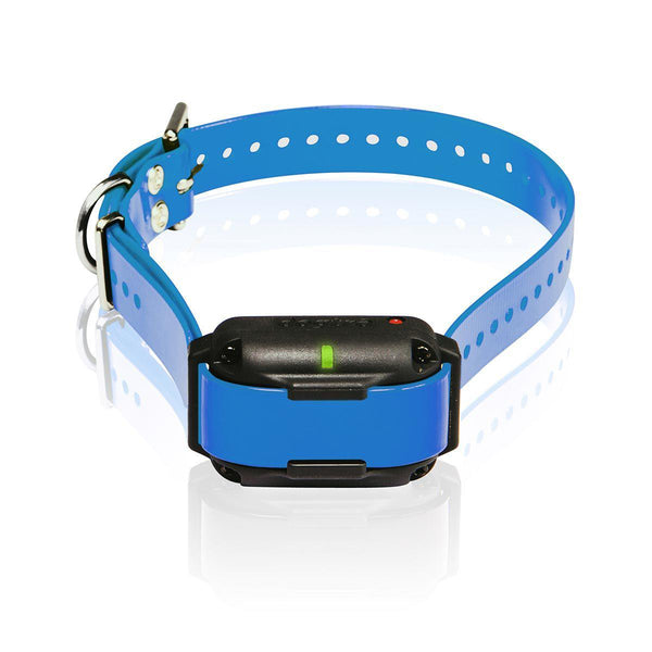 Dogtra Edge RT Additional Receiver Blue Green-Dog-Dogtra-PetPhenom