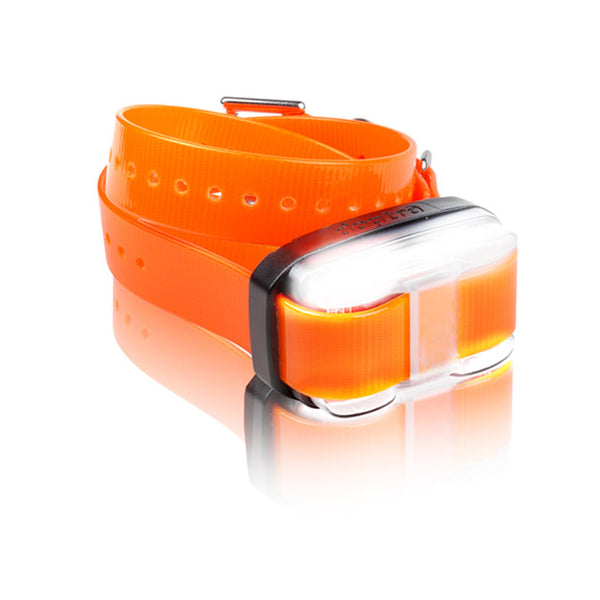 Dogtra EDGE 1 Mile Extra Dog Collar Orange-Dog-Dogtra-PetPhenom