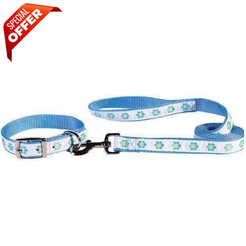 East Side Collection Nylon Fashion Dog Lead, 6-Feet, Light Blue Daisies (Collar Not Included)