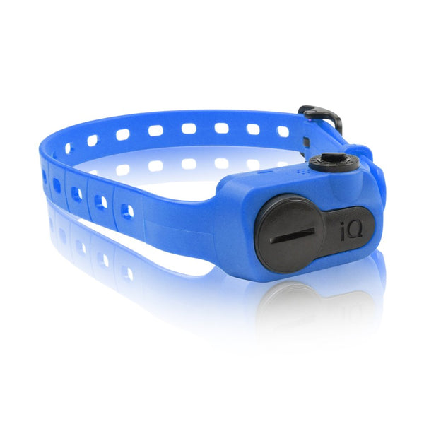 Dogtra iQ No Bark Collar Blue-Dog-Dogtra-PetPhenom