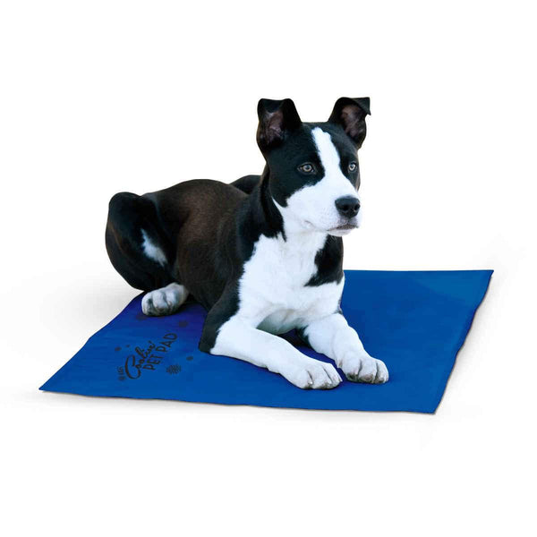 "K&H Pet Products Coolin Pet Pad Large Blue 20"" x 36"" x 0.75""-Dog-K&H Pet Products-PetPhenom"