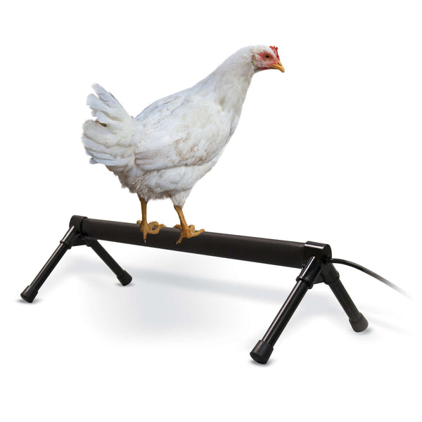 "K&H Pet Products Thermo-Chicken Perch Gray 26"" x 14"" x 8""-Small Pet-K&H Pet Products-PetPhenom"