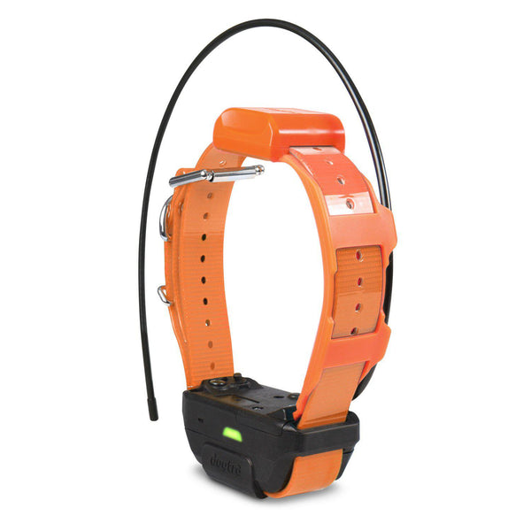 Dogtra Pathfinder TRX Tracking Only Collar Orange-Dog-Dogtra-PetPhenom