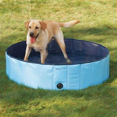 Cool Pup™ Cool Pup™ Splash About Dog Pool -Medium-Dog-Cool Pup-PetPhenom