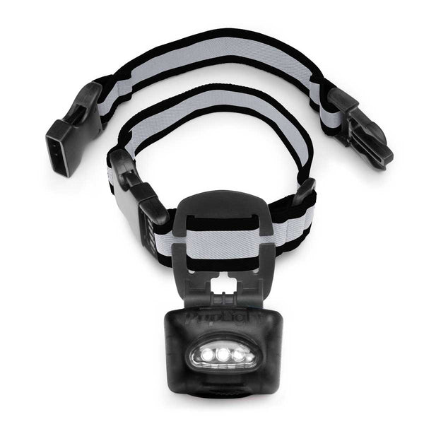 PupLight Dog Safety Light Version 2 Black-Dog-PupLight-PetPhenom