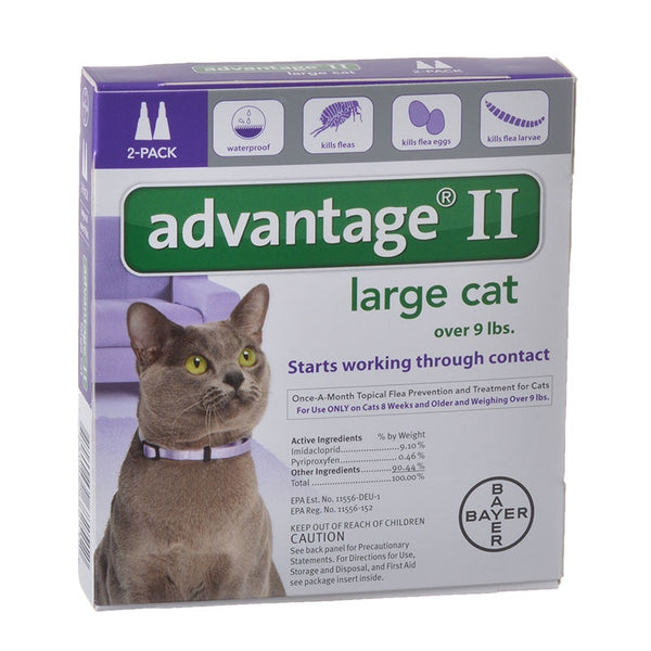 Advantage Flea Control for Cats and Kittens Over 9 lbs 2 Month Supply-Cat-Advantage-PetPhenom