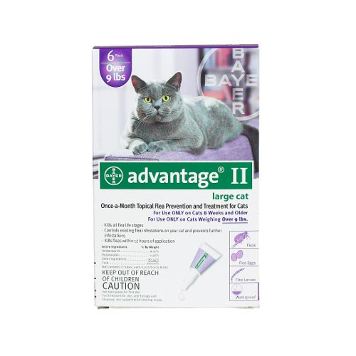 Advantage Flea Control for Cats and Kittens Over 9 lbs 6 Month Supply-Cat-Advantage-PetPhenom