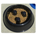 brake-fast® LLC Brake-Fast Bowls - Medium - Blue-Dog-brake-fast® LLC-PetPhenom