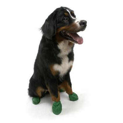 "PawZ Dog Boots PawZ - Green - XLarge - up to 5""-Dog-PawZ Dog Boots-PetPhenom"