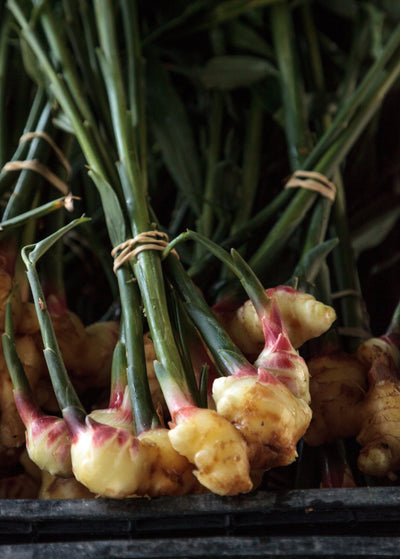 Organic Raw Ginger Root.jpg