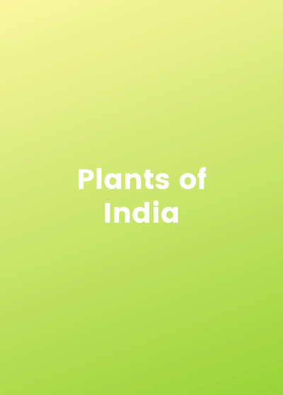 Plants of India Bundle 🇮🇳