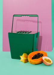Mini Kitchen Compost Caddy