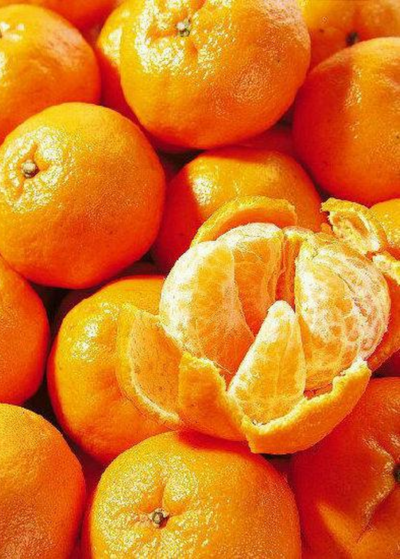 Ponkan Mandarin, Chinese Honey Orange (Citrus poonensis)
