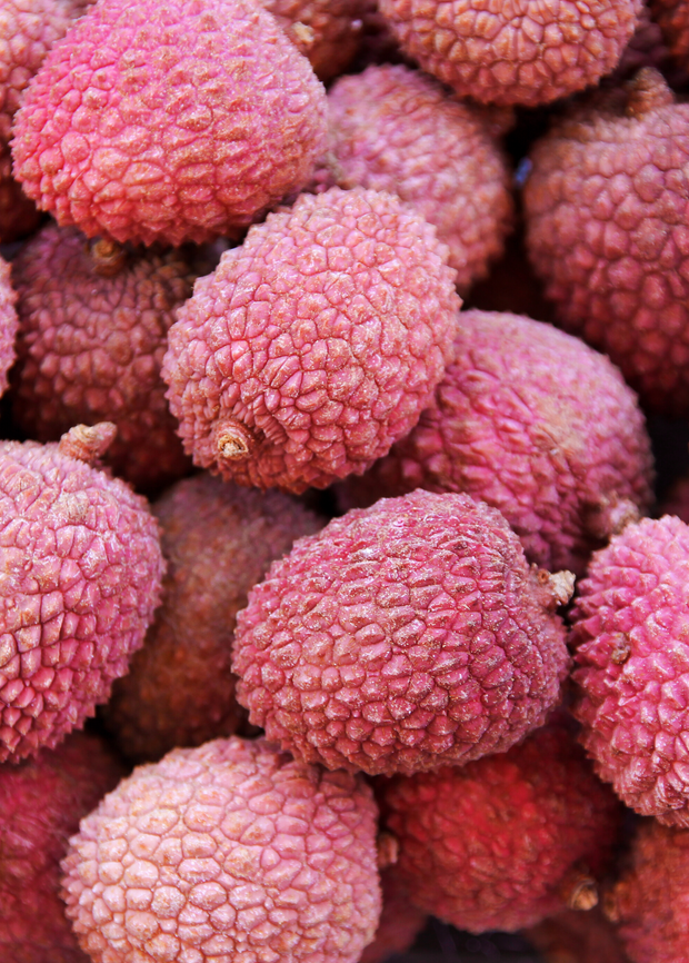 Lychee 'Sweetheart' (Litchi chinensis)