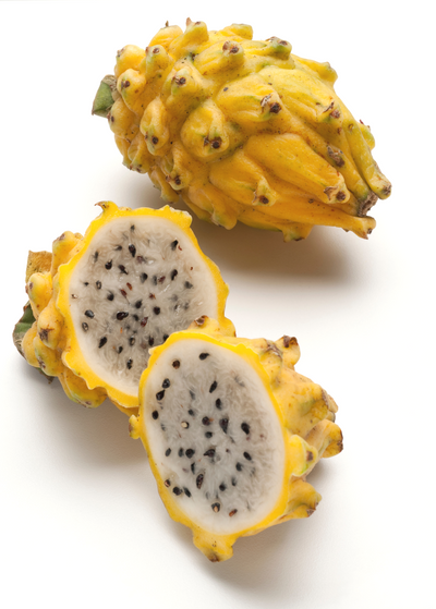 Dragon Fruit, Yellow (Selenicereus megalanthus)