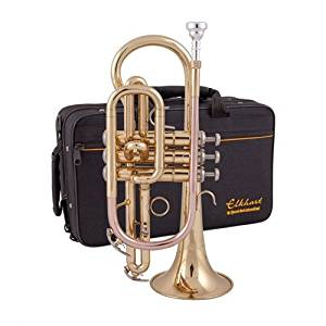 100CR - Elkhart 100CR Bb student cornet outfit with case Default title