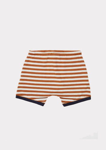 Belgravia Shorts, Brown Stripe