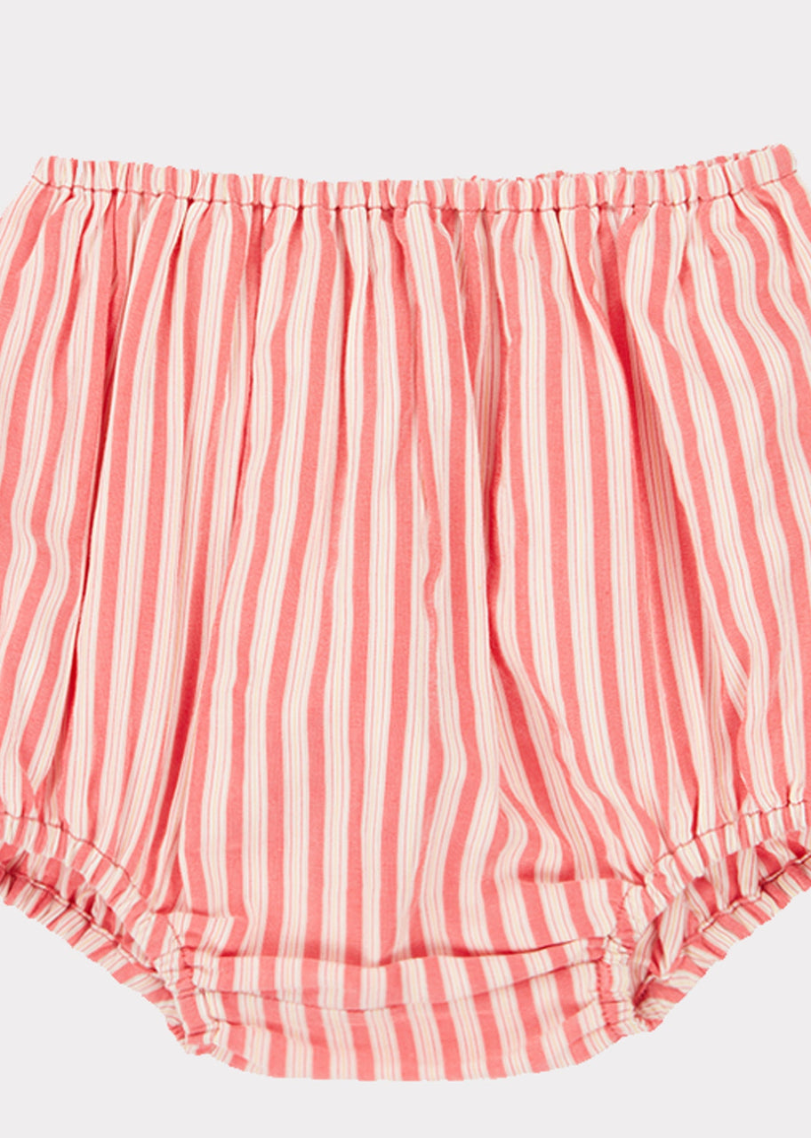 Richmond Bloomer, Berry Stripe