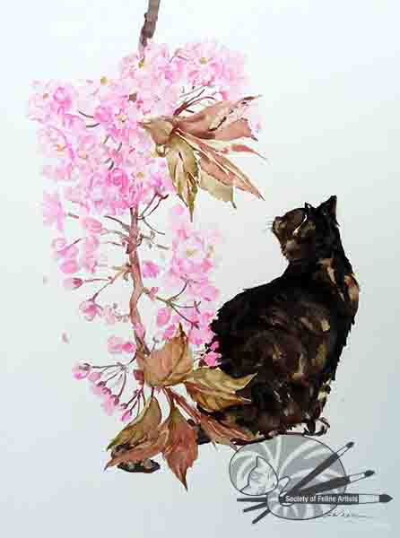 Cat With Blossom