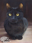 Golden Eyes - Black Cat Limited Edtion Print