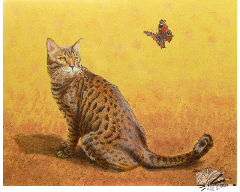 Bengal Butterfly - Limited Edition Print