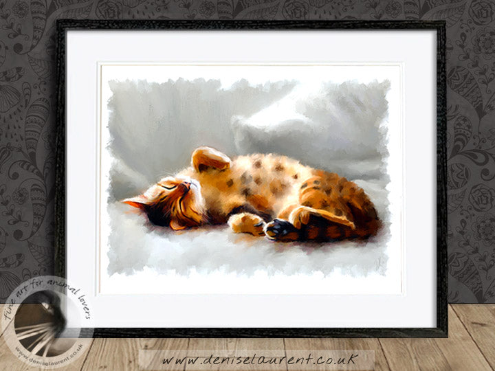 All Curled Up - Bengal Cat Limited Edition Print