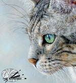 Load image into Gallery viewer, Silver - Bengal Cat Limited Edition Print