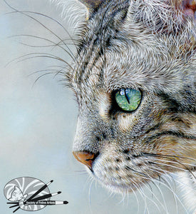 Silver - Bengal Cat Limited Edition Print