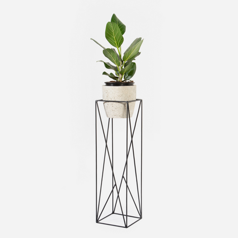 Abstract Plant Stand