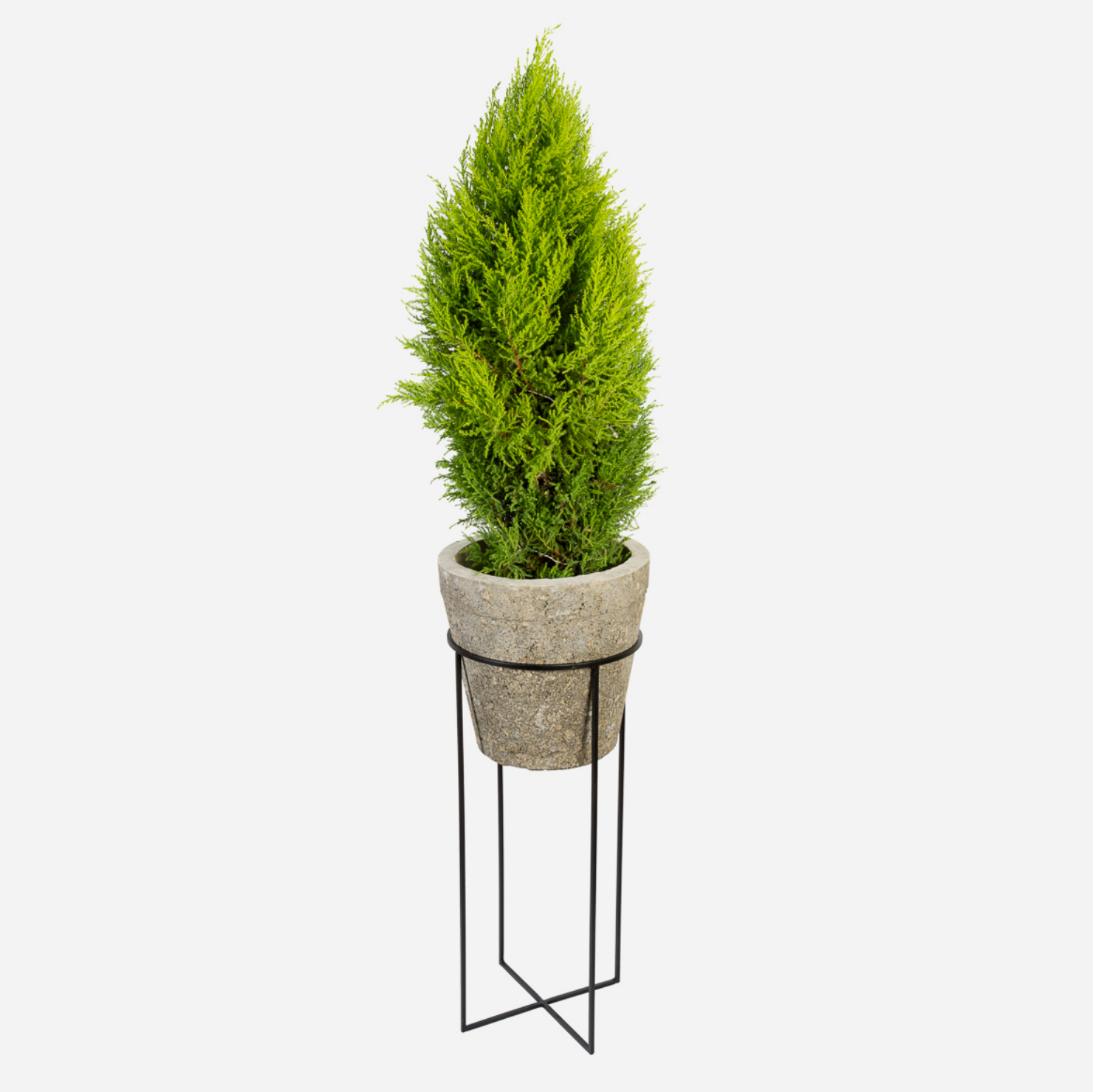Circle Cross Plant Stand