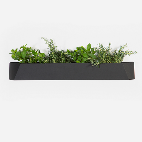Herb Box - Black