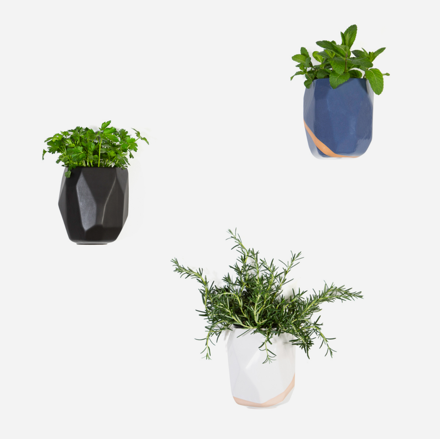 Moonrock Planter - White Terra