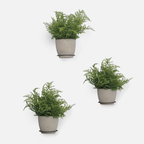 Pot Shelves (Set of 3)