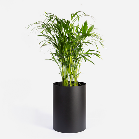Round Sven Floor Planter - Black