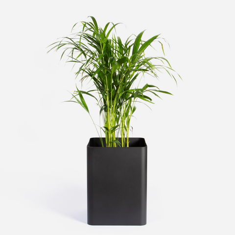 Square Sven Floor Planter -Black