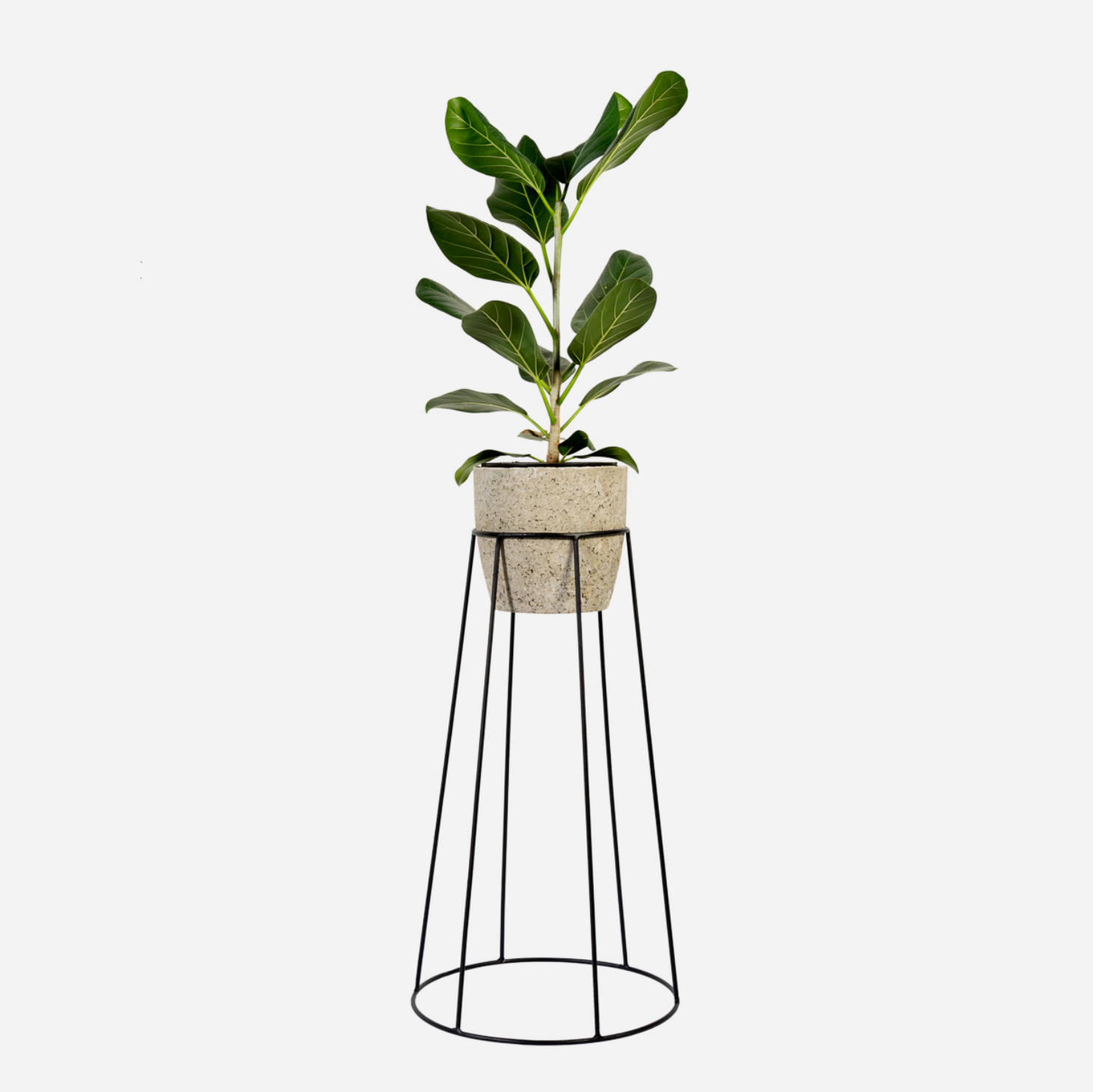 Tall Basket Plant Stand
