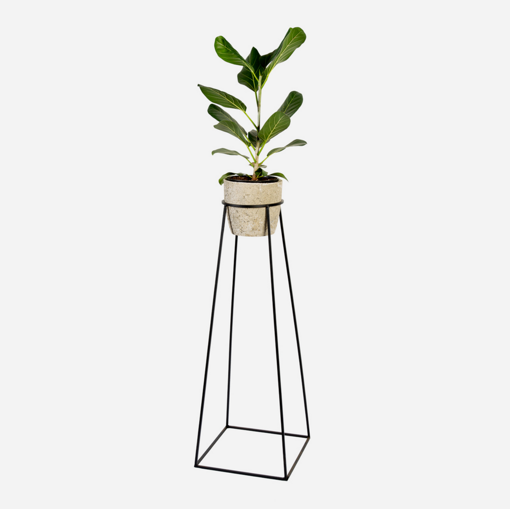 Tall & Steady Plant Stand