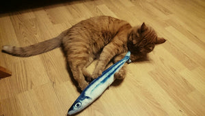 Signature Fish Cat Toy