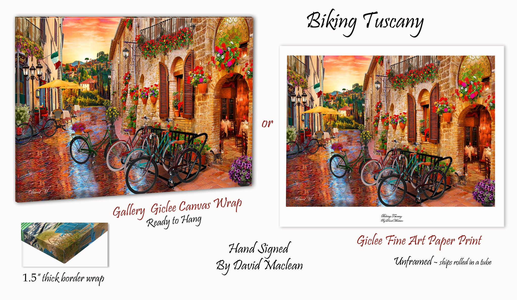 Biking Tuscany ___________________ Order Options Here