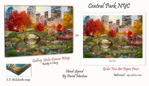 Central Park NYC   _____________________    Order Options Here