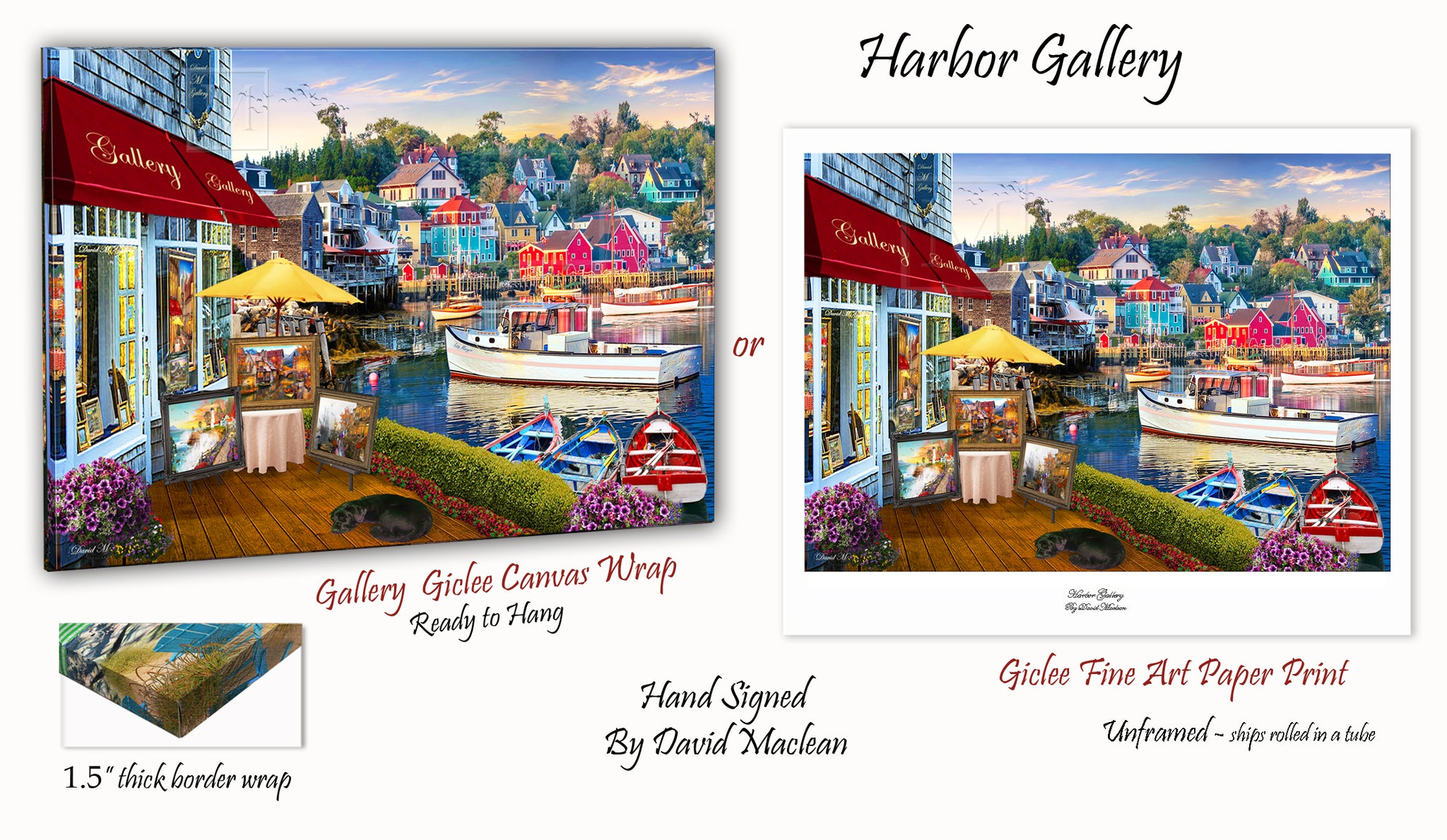 Harbor Gallery  ________________________ Order Options Here