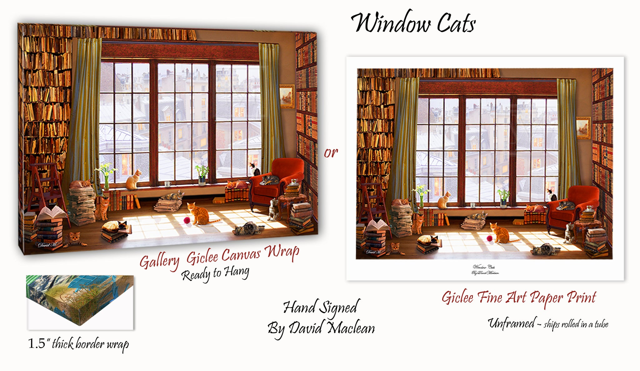 Window Cats  ________________________ Order Options Here