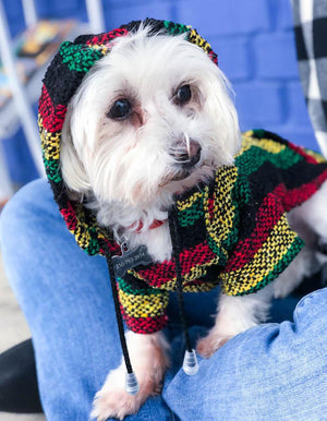 ALA Baja Dog Poncho Hoodies -  - Pet Clothing - Feliz Modern