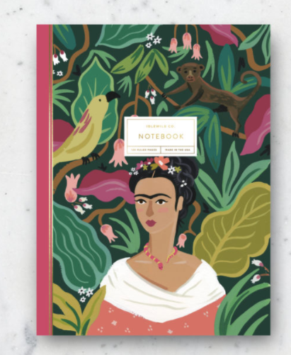 IDL Frida Notebook